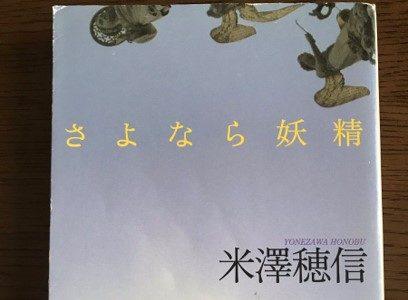【感想】ほろ苦い青春小説!日本文化と日常の謎(米澤穂信『さよなら妖精』)